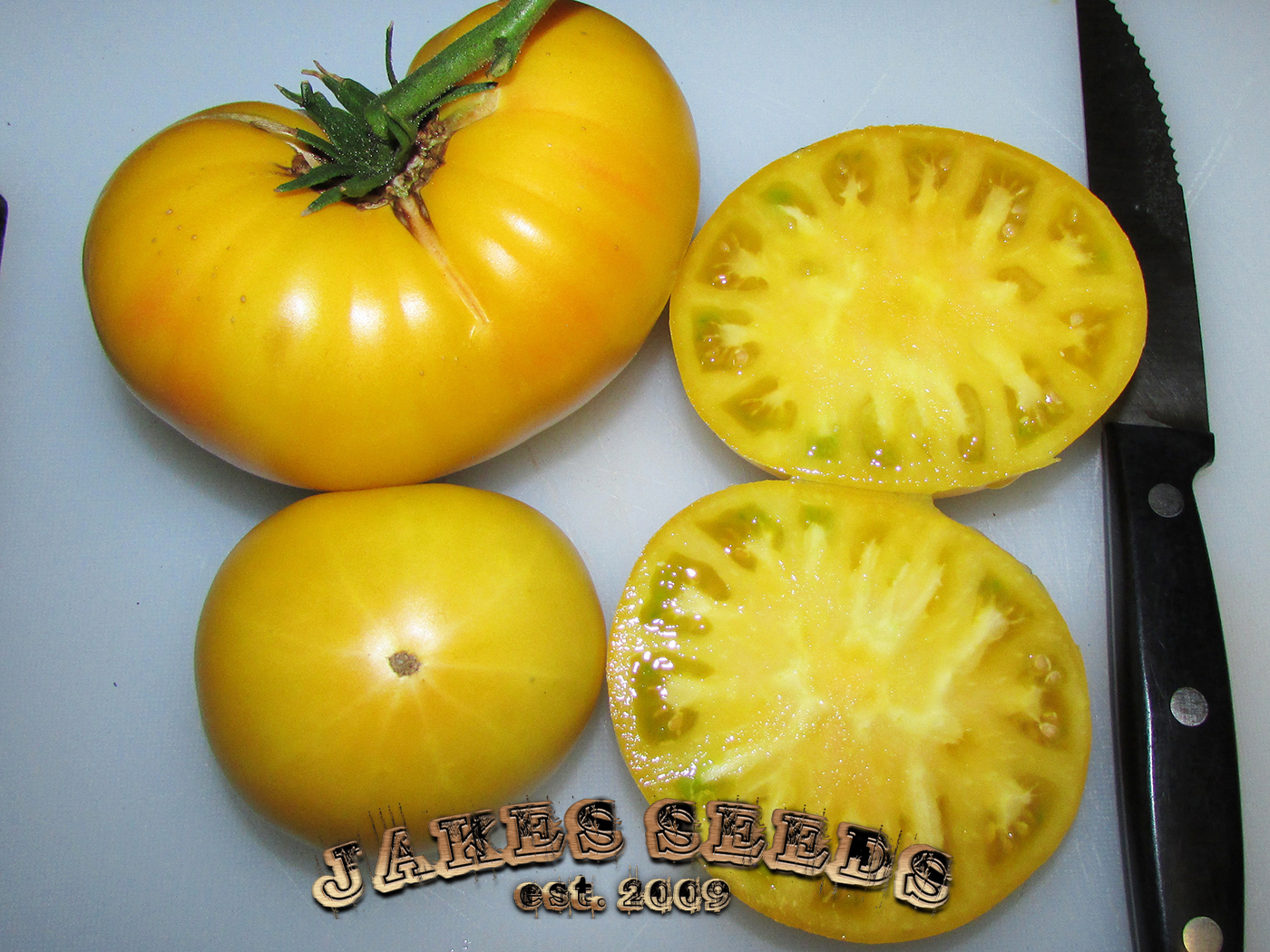 Candy's Old Yellow Heirloom Tomato Seeds - Jake's Seeds
