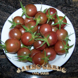 Black Cherry Heirloom