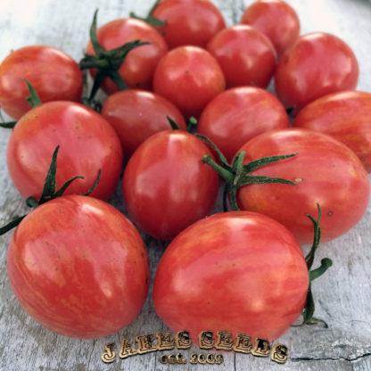 Pink Bumblebee Cherry Tomato Seeds