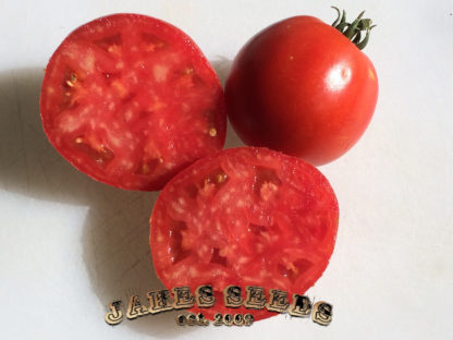 Porter House Tomato Seeds