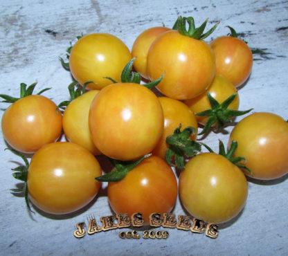 topaz tomato seeds