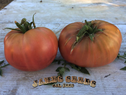 Chocolate Miracle Tomato Seeds