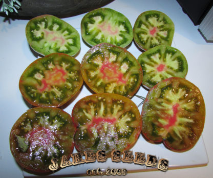 harvard square tomato