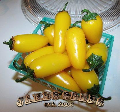 Yellow Jalapeño